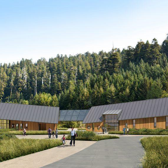 Redwood Visitor Center